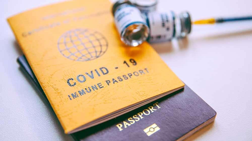 Vaccine Passports and Vaccines